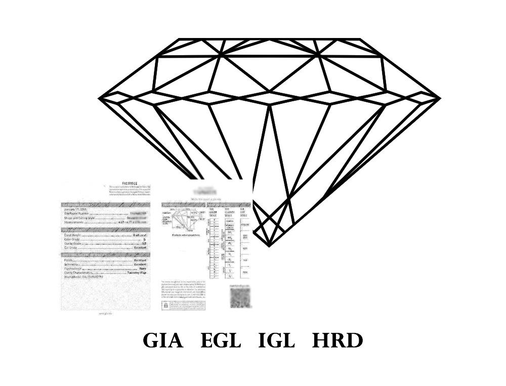 concept-3.jpg